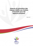 Rapport final CNRACL fumee mars 2017